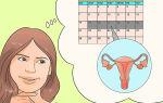 Когда после месячных может наступить беременность: методы расчета опасных дней