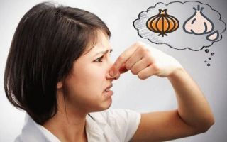 О чем сигнализирует чесночный и луковый запах из женского влагалища