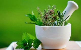 Какие травы пить, чтобы вызвать месячные