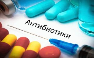 Прием антибиотиков как фактор, провоцирующий задержку месячных