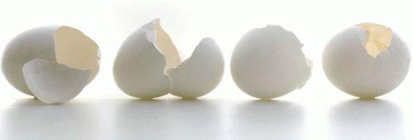 пустые яичные скорлупки