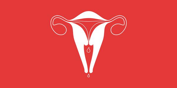 женская половая система при месячных