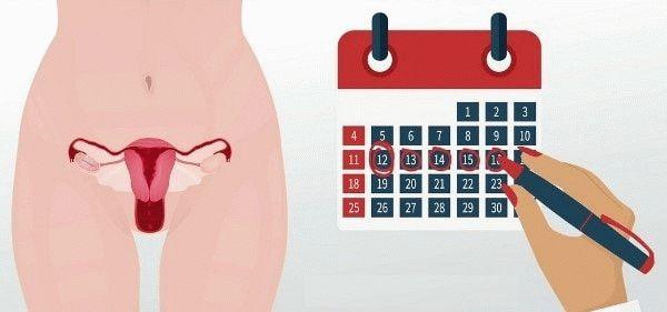 календарь менструаций