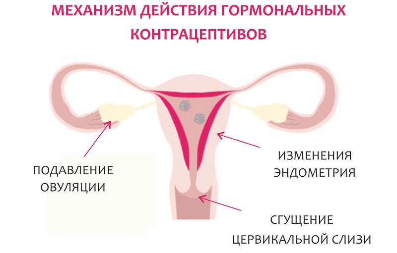 воздействие гормональный препаратов
