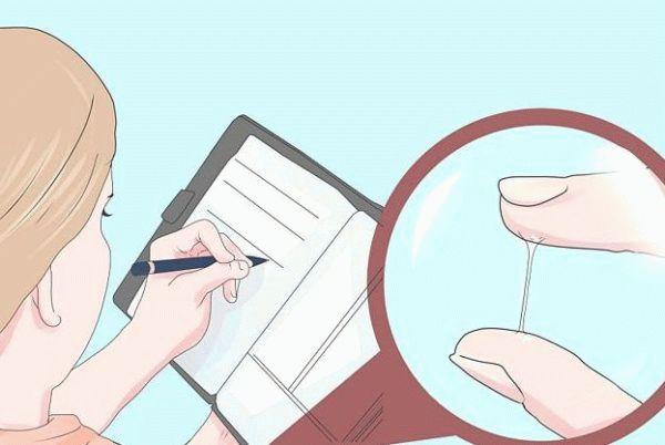 дневник выделений при овуляции