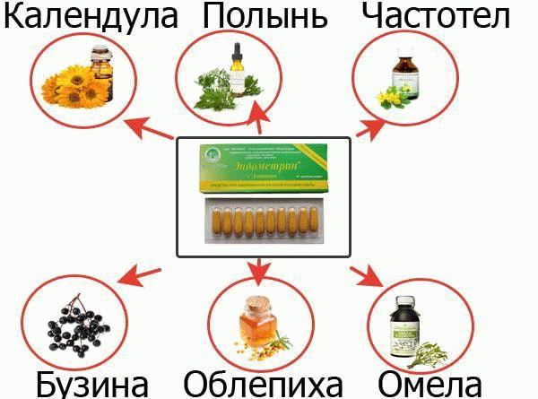Состав эндометрина