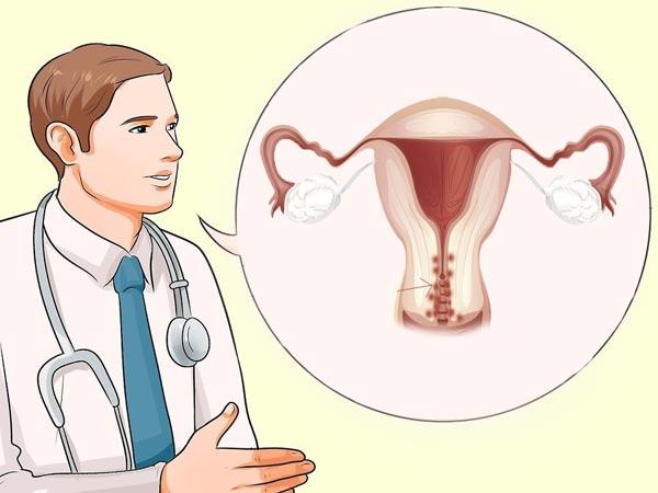 врач и матка